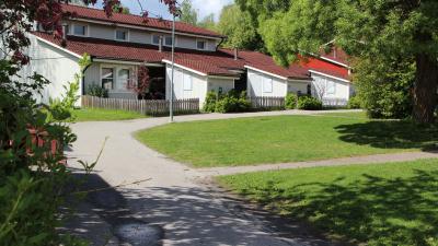 Bild på innergård med asfalterad väg och hyreshus i bakgrunden.
