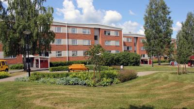 Bild på lägenhetshus i tre våningar i bakgrunden och grönskande rabatt och gräsmatta i förgrunden.