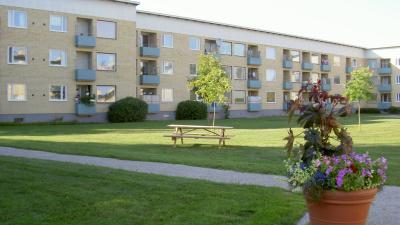 En blomkruka med sommarblommor i förgrunden och ett gult lägenhetshus i tre våningar med blåa balkonger i bakgrunden.