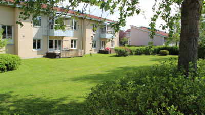 Lägenhetshus med uteplats och gräsmatta och träd i förgrunden.