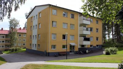 Lägenehetshus med gräsmattor och träd och buskar runt om