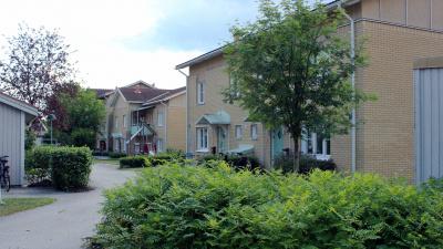 Bild på en innergård på ett bostadsområde med lägenhetshus. Gröna buskar och träd och en asfalterad gång mellan husen.