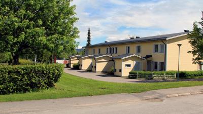 Lägenhetshus och gräsmatta och träd
