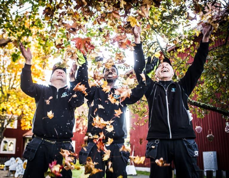 bild på trägårdsarbetare som kastar löv