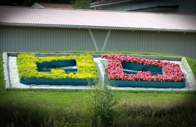 Blomplantering av Bollnäs Bostäders logotyge